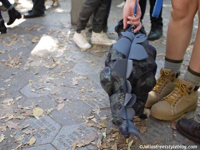 julia_luedtke_c_juliastreetstyleblog_dogs_hunde_parade_halloween_new_york_1-10