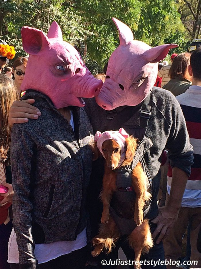 julia_luedtke_c_juliastreetstyleblog_dogs_hunde_parade_halloween_new_york_1-2