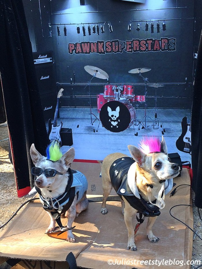 julia_luedtke_c_juliastreetstyleblog_dogs_hunde_parade_halloween_new_york_1-3
