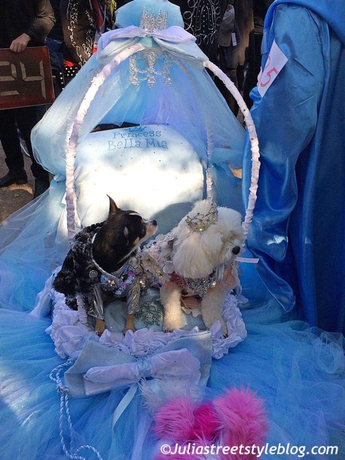 julia_luedtke_c_juliastreetstyleblog_dogs_hunde_parade_halloween_new_york_1-4