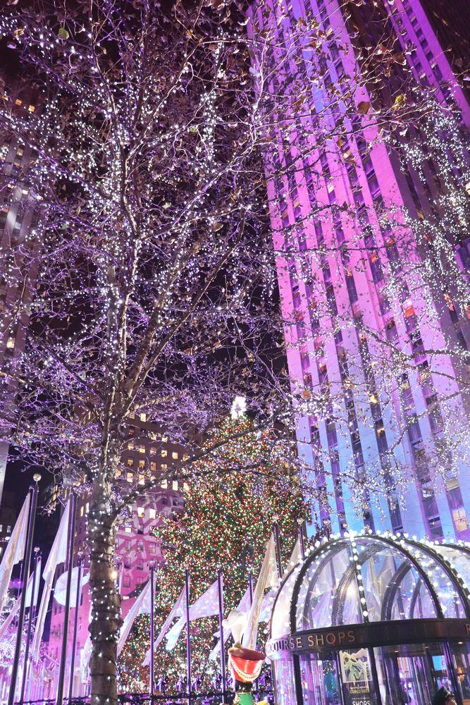 weihnachten in new york Gwen Stefanie Seal The Rockettes | Julia ...
